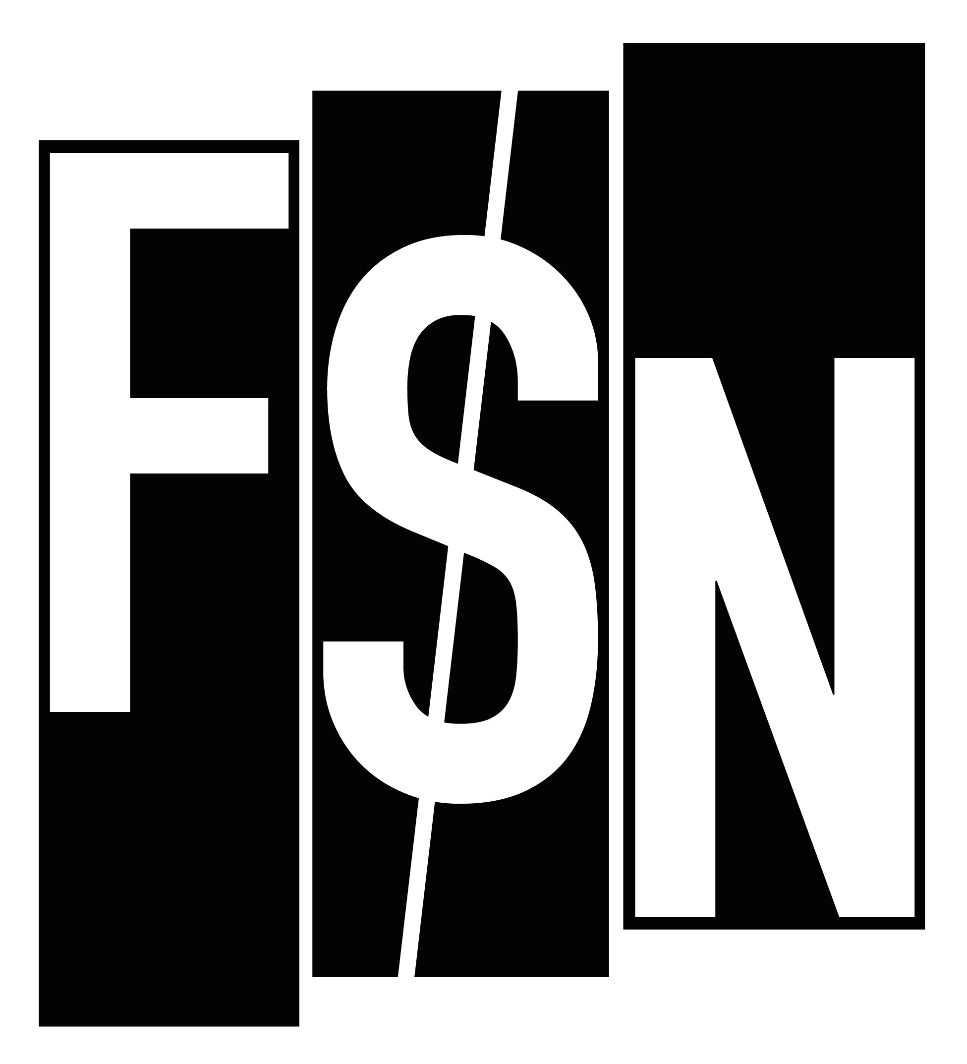 FSN 2019: Call for papers open